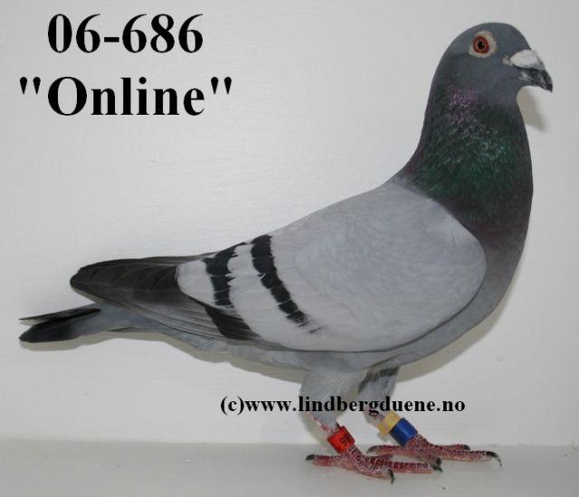 Online-Grand Prix